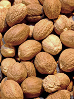 Nutmeg Essential Oil 100% Pure