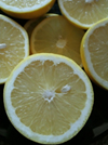Grapefruit (White) Essential Oil